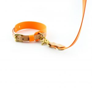 Hundehalsband und Leine aus Biothane orange
