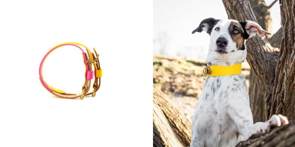 Hundehalsband Biothane Podenco