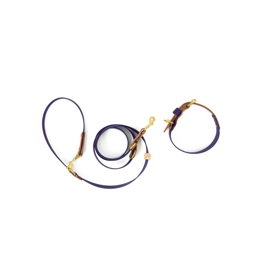 Biothane Halsband und Leine